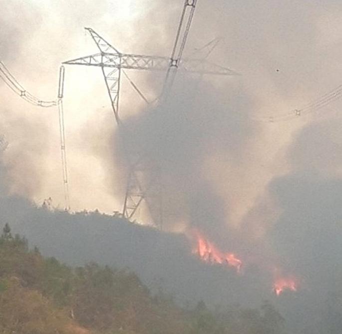 Thủ tướng chỉ đạo cấp bách phòng cháy, chữa cháy rừng