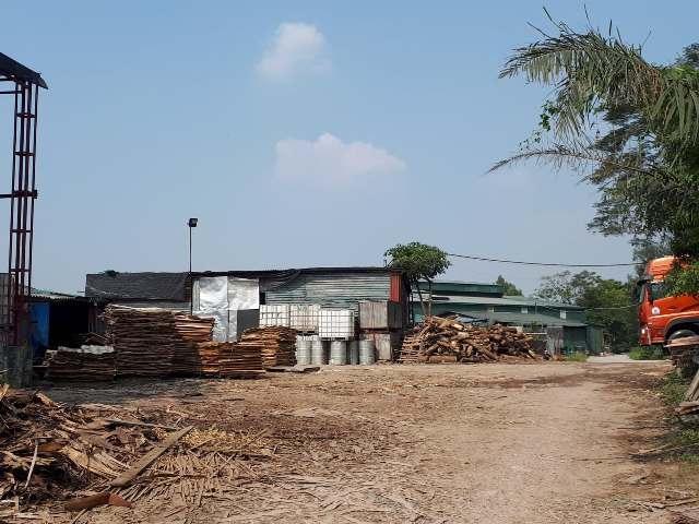 Xã Mai Lâm, huyện Đông Anh: Chưa xử lý dứt điểm tình trạng ô nhiễm môi trường