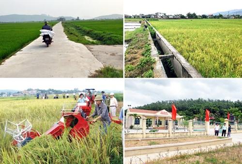 50 tỉnh, thành phố đã xử lý xong nợ đọng xây dựng nông thôn mới