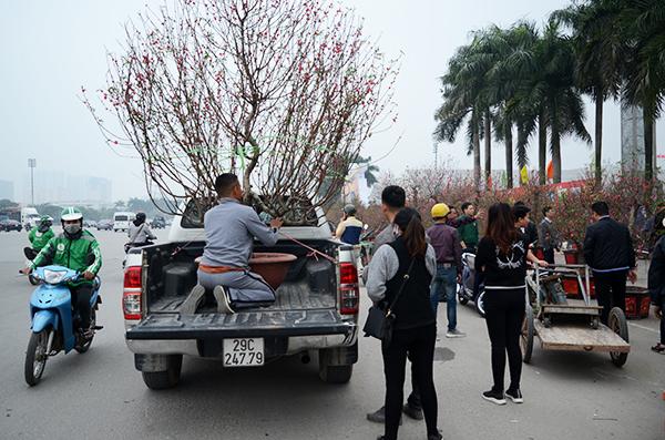 Hà Nội: Rộn ràng không khí tết tại chợ hoa Xuân
