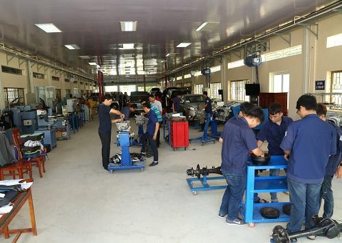 Cần Thơ thực hiện Luật Giáo dục nghề nghiệp để đào tạo nhân lực chất lượng cao - Ảnh 3