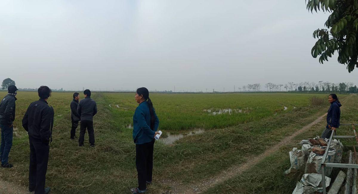 Cả cánh đồng hàng nghìn hecta chuyển đổi mục đích xây nghĩa trang khiến người dân bức xúc