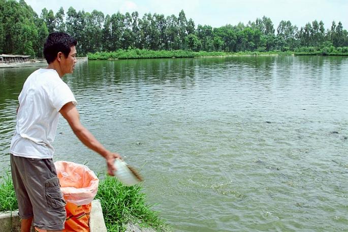 Hà Nội siết việc kinh doanh, sử dụng hóa chất, kháng sinh trong nuôi trồng thủy sản