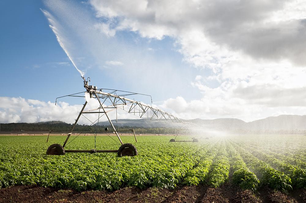 Đồng bộ nhiều giải pháp phát triển chuỗi cung ứng sản phẩm nông sản