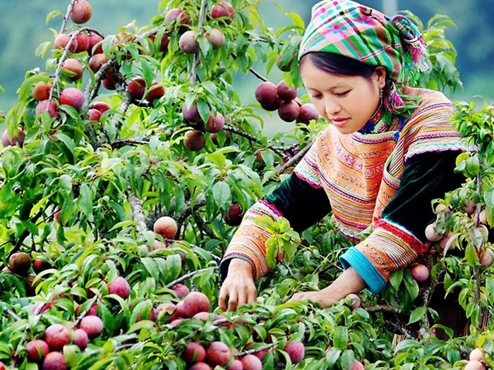 Du lịch 30/4: Những địa điểm hấp dẫn gần Hà Nội
