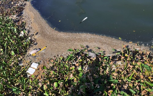 Đà Nẵng: Nước sông Hàn ô nhiễm do nước thải từ các nhà hàng