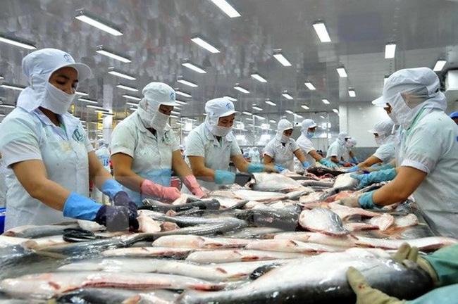 Thuế chống bán phá giá với cá tra của Việt Nam đã được điều chỉnh giảm - Ảnh 1