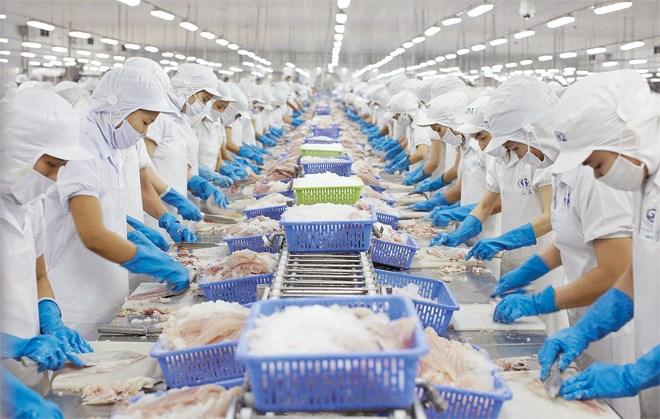 Doanh nghiệp thủy sản đóng góp ý kiến về các vấn đề hợp đồng xuất khẩu