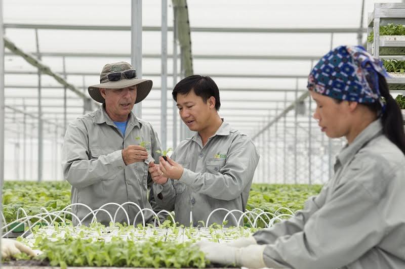 Thiếu lao động có trình độ cao đáp ứng nông nghiệp thời kỳ 4.0