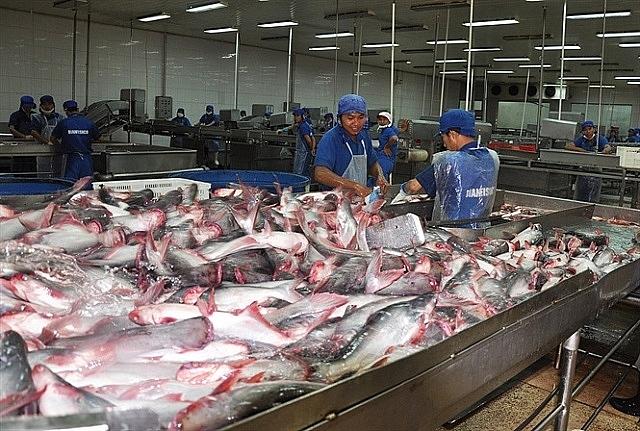 Thị trường Hàn Quốc còn xa lạ với cá tra Việt Nam