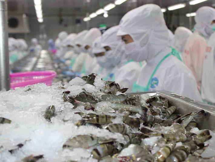 Xuất khẩu tôm Việt Nam sang Hàn Quốc, thuận lợi từ VKFTA