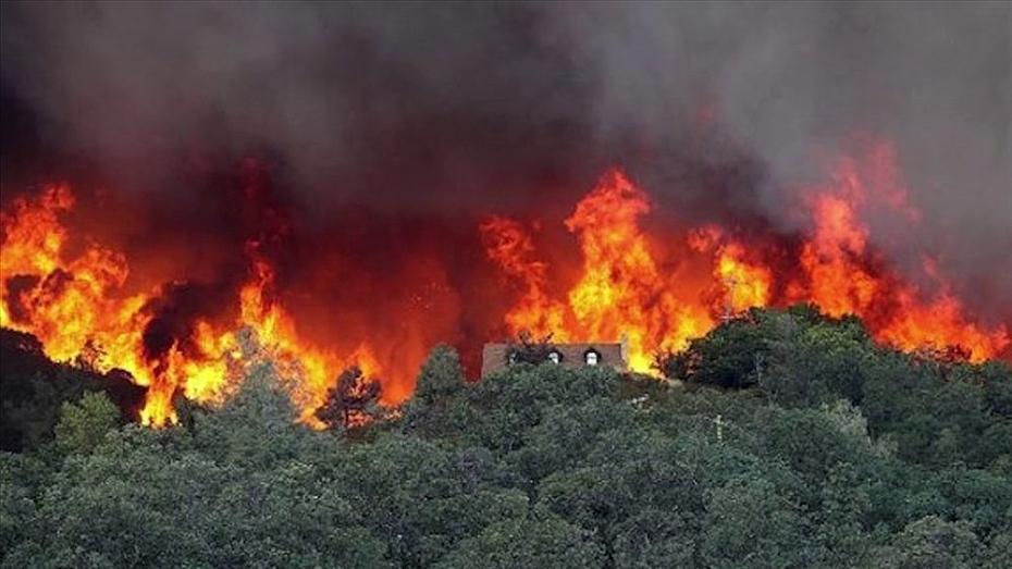 Nắng nóng kéo dài, cảnh báo cháy rừng và tia UV gây hại