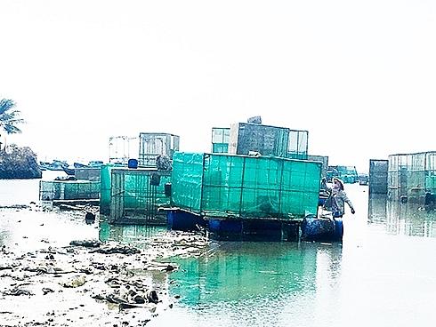 Khánh Hoà: Gấp rút di dời các lồng bè lấn chiếm công trình hàng hải
