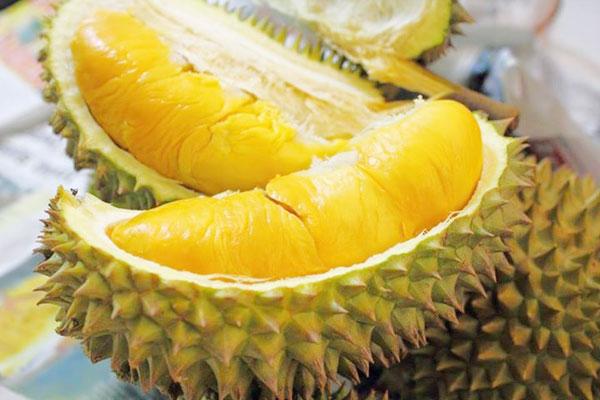 Ăn sầu riêng có nguy cơ tử vong