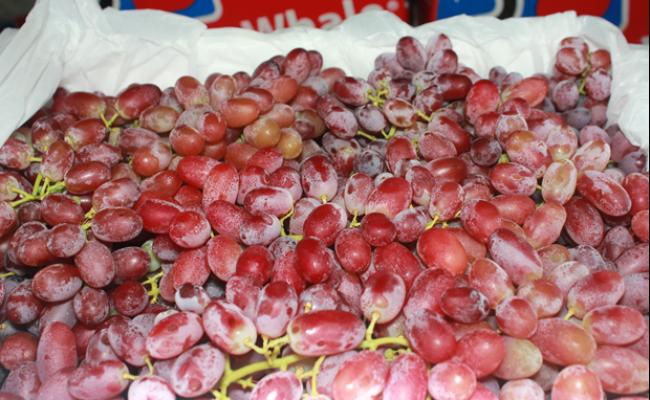 3 loại hoa quả Úc được nhập khẩu trở lại là nho, cam và quýt.