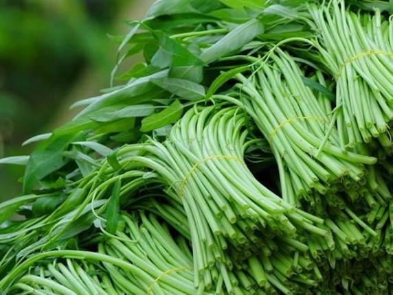 Điểm danh các loại rau ngậm nhiều thuốc kích thích nhất