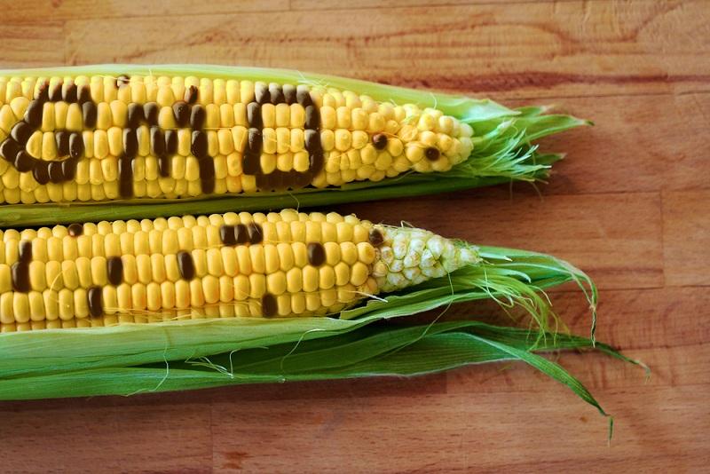 Thực phẩm biến đổi gen sẽ phải ghi nhãn trên bao bì
