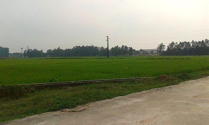 Công bố giá khởi điểm đấu giá đất khu vực Sóc Sơn, Hà Nội
