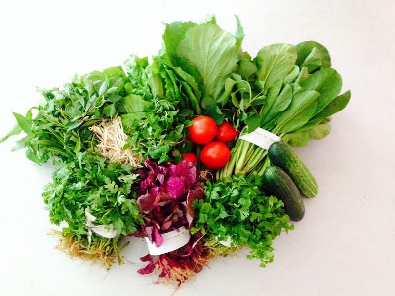 Rau hữu cơ, rau sạch và rau an toàn có giống nhau không?