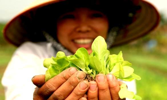 Danh sách cửa hàng thực phẩm hữu cơ tại TPHCM