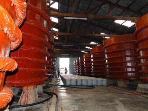 Công bố Bộ tiêu chuẩn đánh giá nước mắm truyền thống
