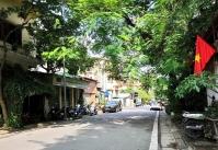 Sáng nay, phố Hà Nội đang rất xanh
