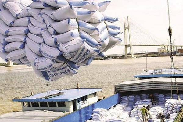 Thanh tra Chính phủ vào cuộc thanh tra về xuất khẩu gạo