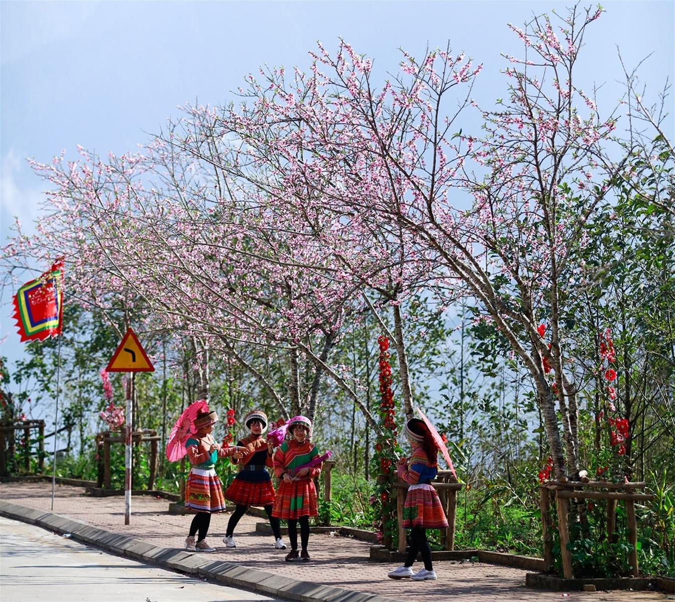 Đi dọc Việt Nam thưởng trọn vị Tết ở Sun World