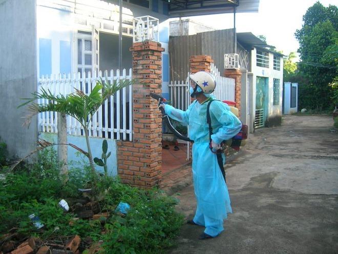 Dịch vụ phun thuốc muỗi phòng sốt xuất huyết hút khách đầu hè