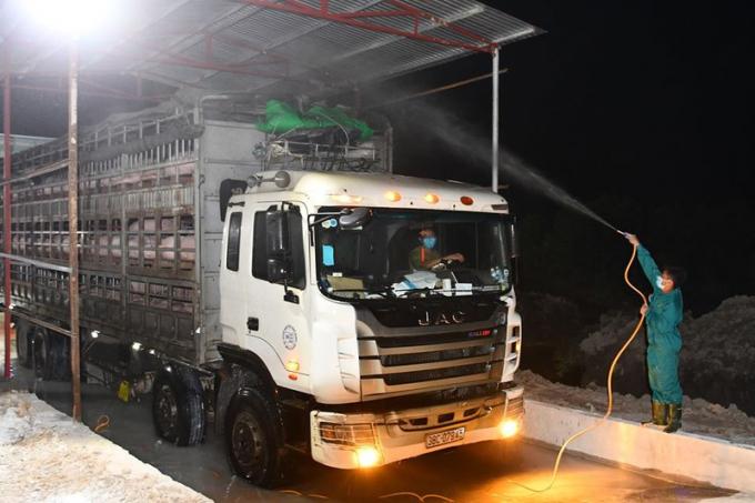 Ngăn chặn hoạt động buôn lậu trái phép lợn, các sản phấm thịt lợn qua biên giới