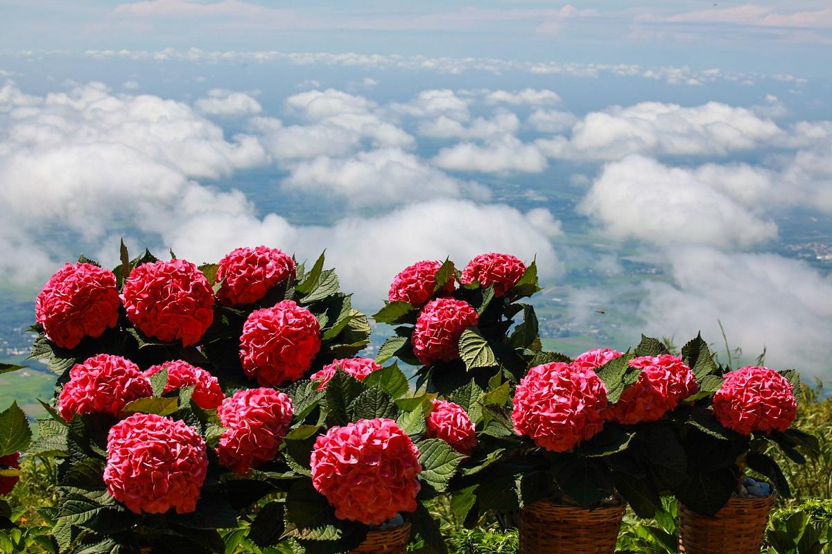 Chơi gì trên Núi Bà Đen vui trọn ngày dài?