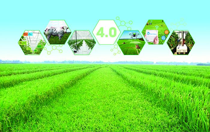 Tiềm năng bất động sản nông nghiệp: Còn nhiều dư địa tăng trưởng