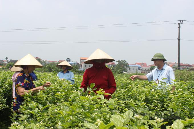 Đánh thức tiềm năng thị trường bất động sản nông nghiệp Việt Nam