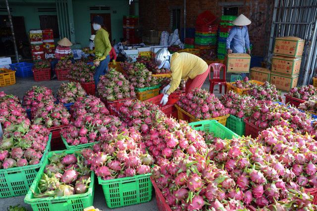 Xuất khẩu nông, thủy sản tìm thị trường mới để đối phó với dịch bệnh corona