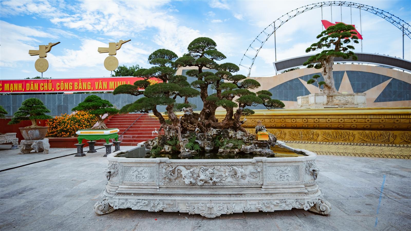 Festival cây cảnh – đá quý – đá phong thủy quy tụ hàng nghìn cây cảnh độc đáo