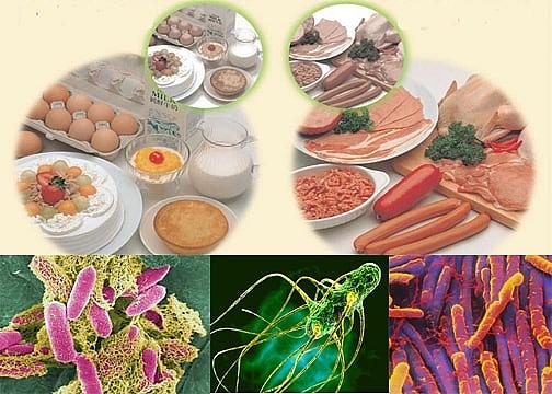 Nguyên nhân và cách xử lý khi bị ngộ độc thực phẩm