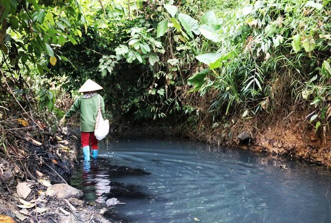 Chuyên gia chỉ cách lọc chất ô nhiễm Styren trong nước hiệu quả nhất