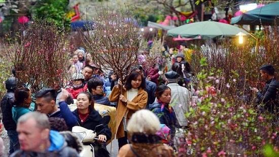 Hà Nội tổ chức 51 điểm chợ hoa Xuân phục vụ Tết Canh Tý