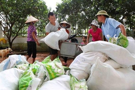 Hỗ trợ gạo cho 6 tỉnh dịp tết Nguyên đán