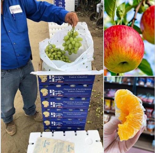 Tổng hợp khuyến mãi từ các cửa hàng thực phẩm sạch Hà Nội