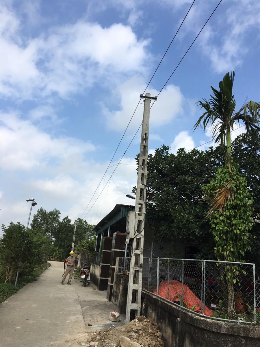Thanh Hóa: Điện lực trồng cột, nâng cấp đường dây, dân hết cảnh lo sợ
