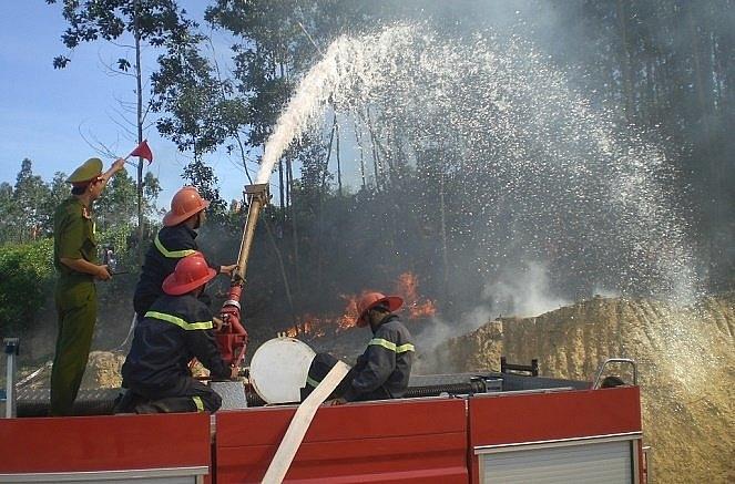Hà Nội tăng cường công tác phòng cháy, chữa cháy rừng