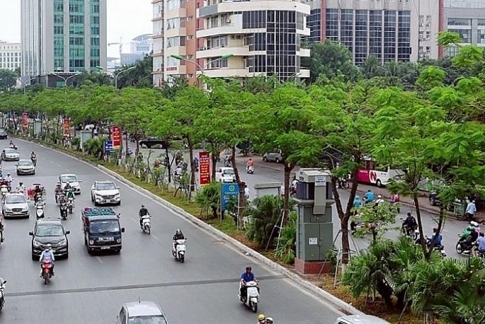 9 tháng đầu năm, Hà Nội trồng được 144,7 nghìn cây đô thị