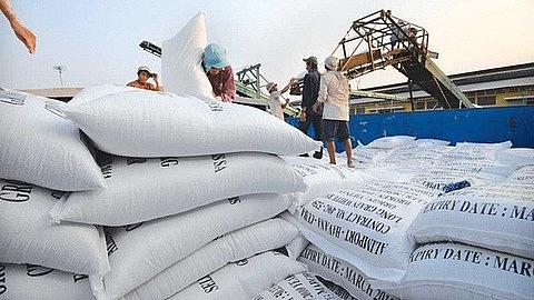 Hà Nội: Tháo gỡ khó khăn thúc đẩy xuất khẩu gạo trong bối cảnh dịch Covid-19
