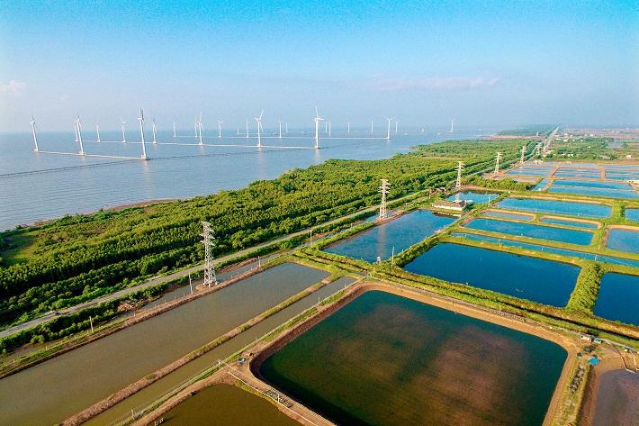 Kỳ vọng từ sự phát triển năng lượng xanh