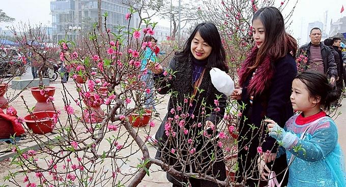 Hà Nội đón Tết Canh Tý 2020 trong mưa rét